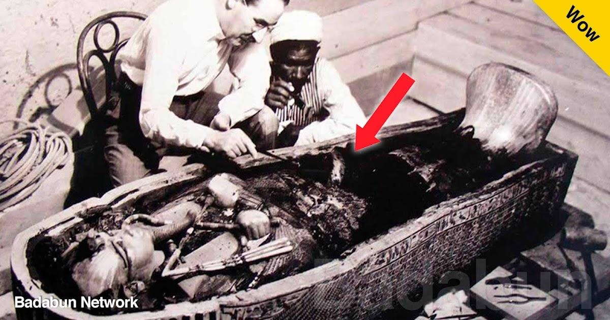 momias Egipto cleopatra tutankamon cancer gusanos arsénico abejas