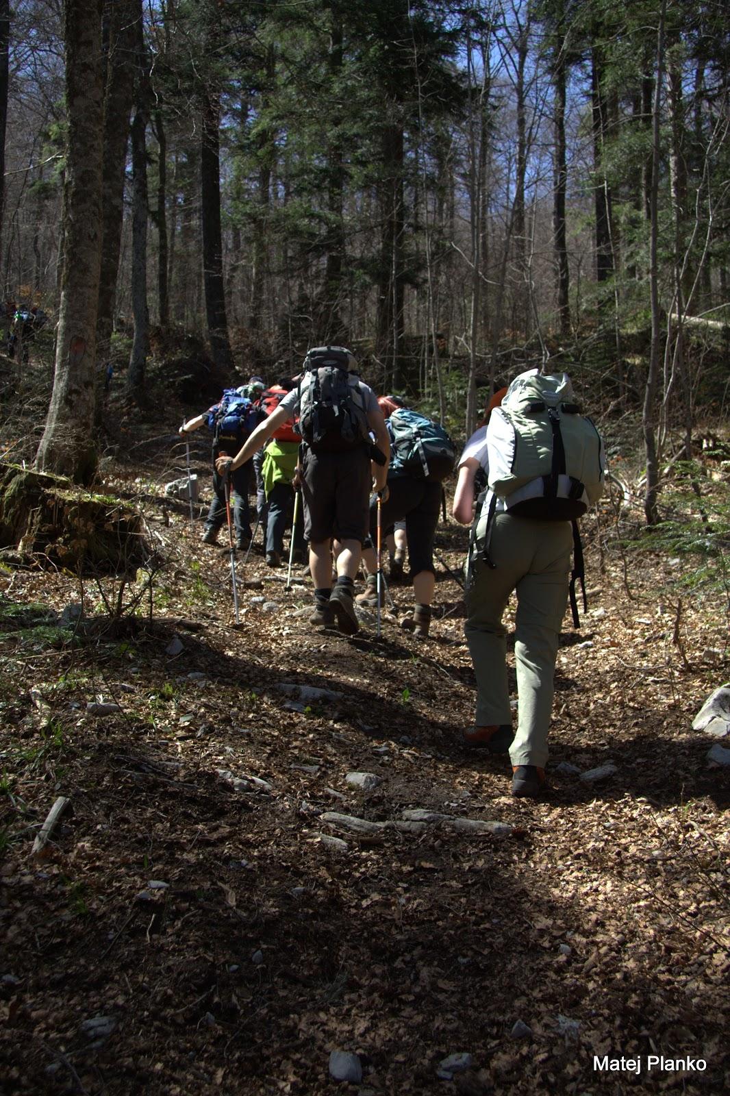 V zadnjem delu poti po gozdu smo morali dobro zagristi v kolena