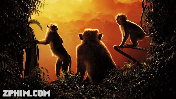 Ảnh trong phim Vương Quốc Khỉ - Monkey Kingdom 1