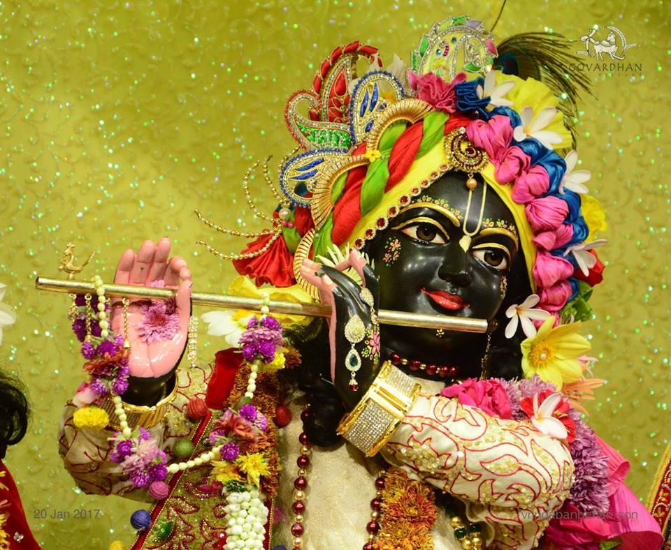 ISKCON GEV Deity Darshan 20 Jan 2017 (2)