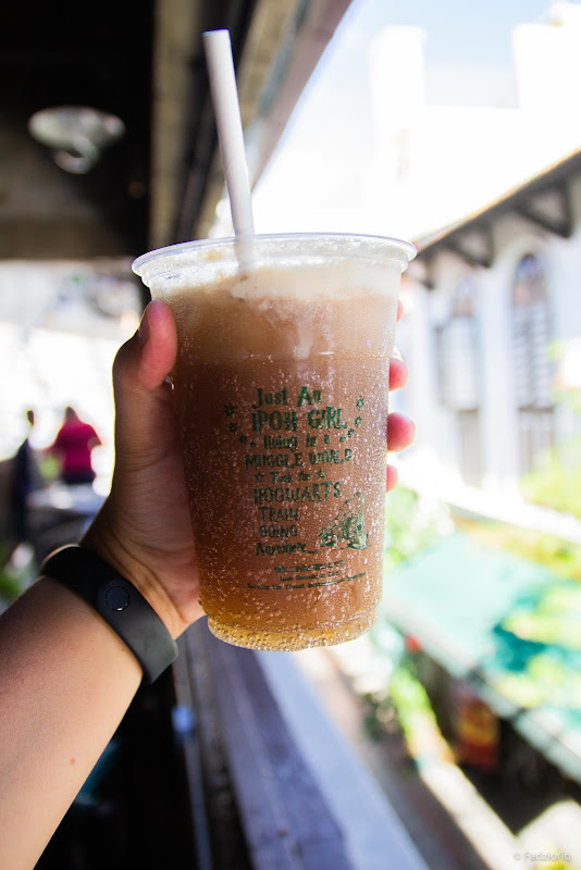 Butterbrew Float with a Hogsmeade view