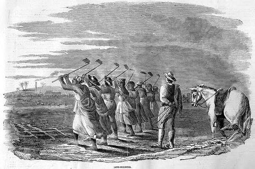 [slaves-working-in-the-fields-jamaica.jpg]