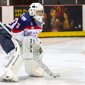 Concentration by Yves Sansoucy - Sports & Fitness Ice hockey ( hockey, goalie, white, pads, ice, stick, mask )