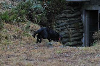 Photo: Bonnie på vei ned i den mørke bunkersen