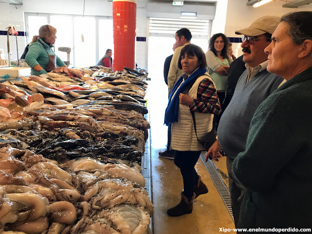 mercado-pescado-costa-nova.JPG