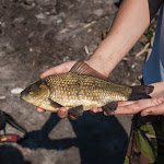 20150530_Fishing_Virlia_037.jpg