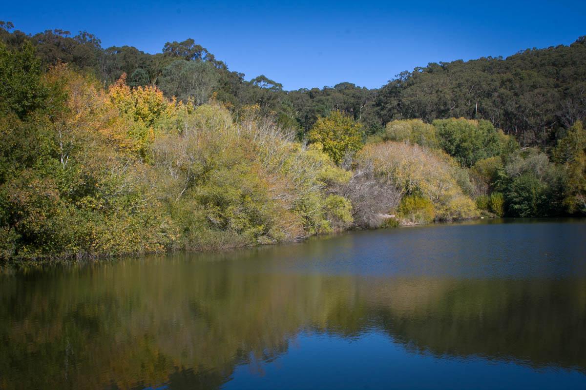2011 04 25 Mt Lofty Botanic Garden - IMG_6533.jpg