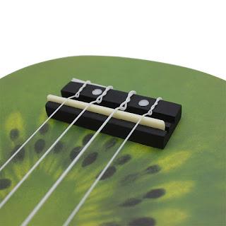 dan ukulele kiwi
