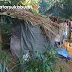 Miris, Wanita Paruh Baya Hidup Sendiri Huni Gubuk di Sukabumi