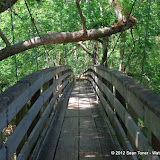 04-04-12 Hillsborough River State Park - IMGP9672.JPG