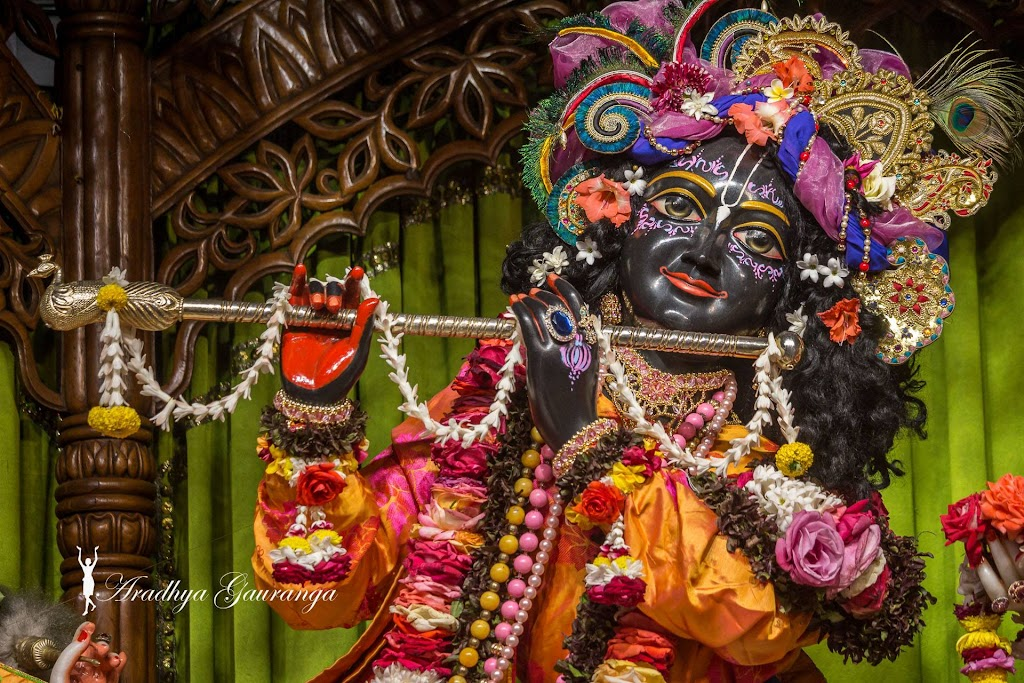 ISKCON Mayapur Deity Darshan 20 Jan 2017 (37)