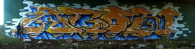 DSCN7137
