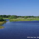 04-06-12 Myaka River State Park - IMGP9877.JPG