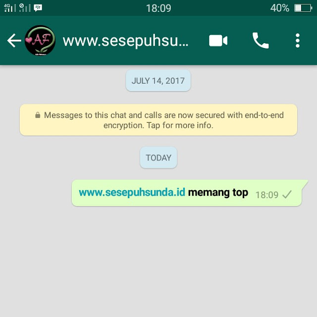 chat WA tebal