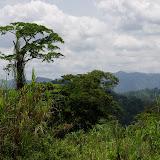 Au nord du Mont Fébé, Yaoundé (Cameroun), 11 avril 2012. Photo : J.-M. Gayman