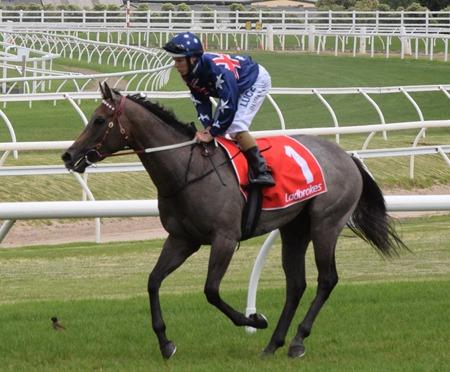 race 4_limestone 1