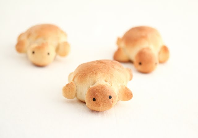 Cute Turtle Breads