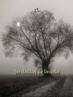 Şu daċkęį ńi lasċdir Cover
