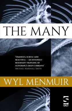 The Many by Wyl Menmuir
