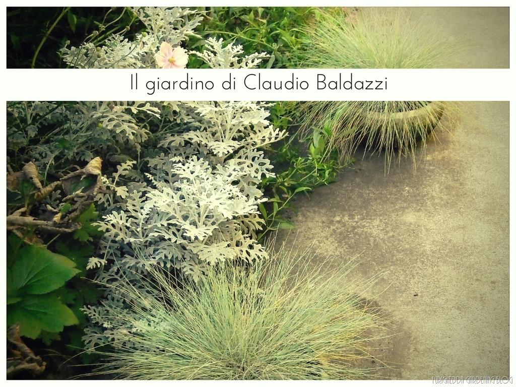 [Il+giardino+di+Claudio+%2814%29%5B3%5D]