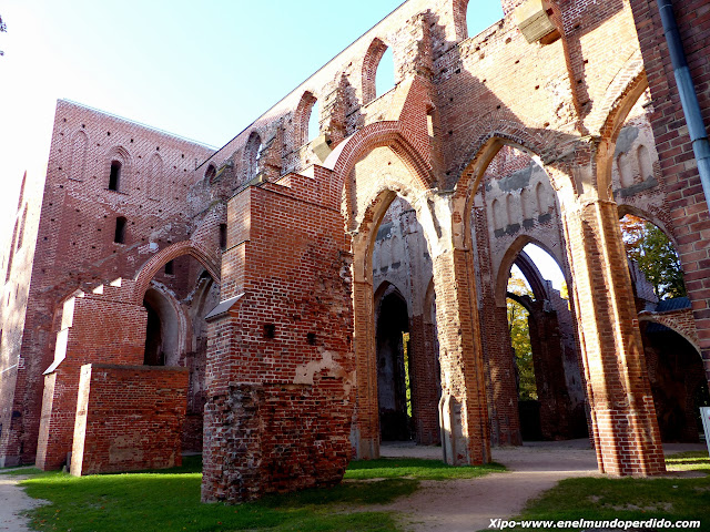 ruinas-catedral-tartu.JPG