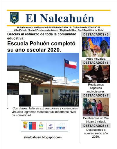 El Nalcahuén IMPRESO N° 46 (Diciembre de 2020)