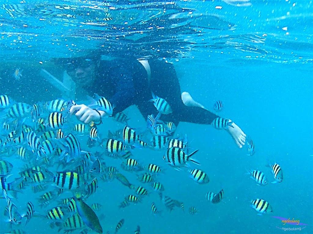 pulau harapan, 6-7 juni 2015 samsung gopro be 22