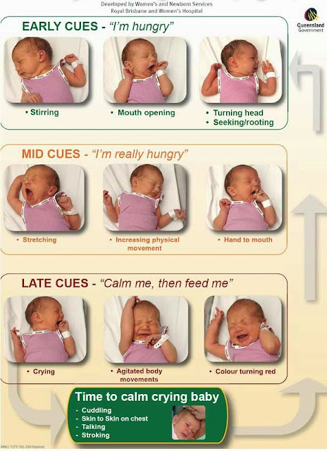 Breastfeeding Journey Sore And Cracked Nipples Reigningstill