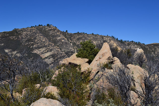 some rocks at the top of Arlington Peak