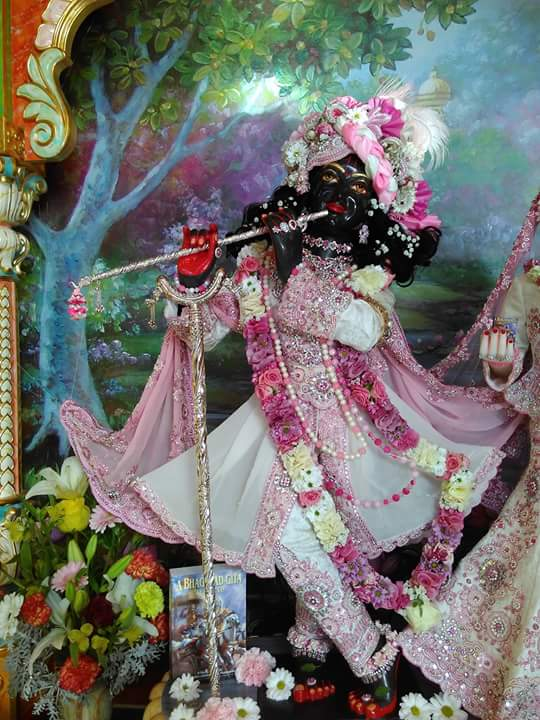 ISKCON Hungary Deity Darshan 21 Dec 2015 (3)