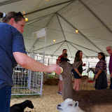 Fort Bend County Fair 2014 - 116_4263.JPG
