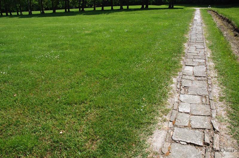Villa Malcontenta 60