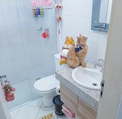 Kamar mandi sempit dengan dinding keramik kecil
