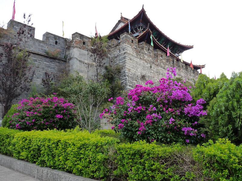 CHINE .Yunnan DALI 2 - P1170427.JPG