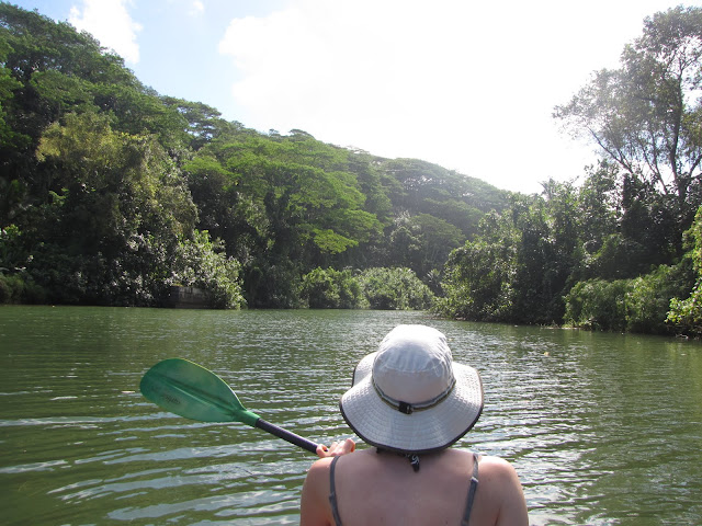 2012 - IMG_9167_Kalihiwai_River_Kayaking.JPG