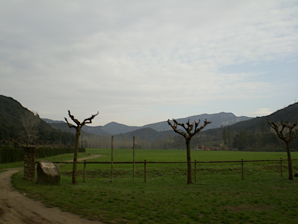 Campaments Amb Skues 2007 - CIMG8624.JPG
