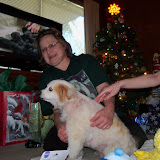 Christmas 2012 - 115_4590.JPG