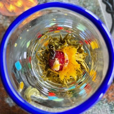 Janet Wilks