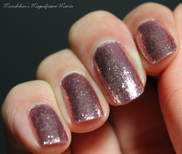 Holo Taco- Frosted Metals- Fake Date