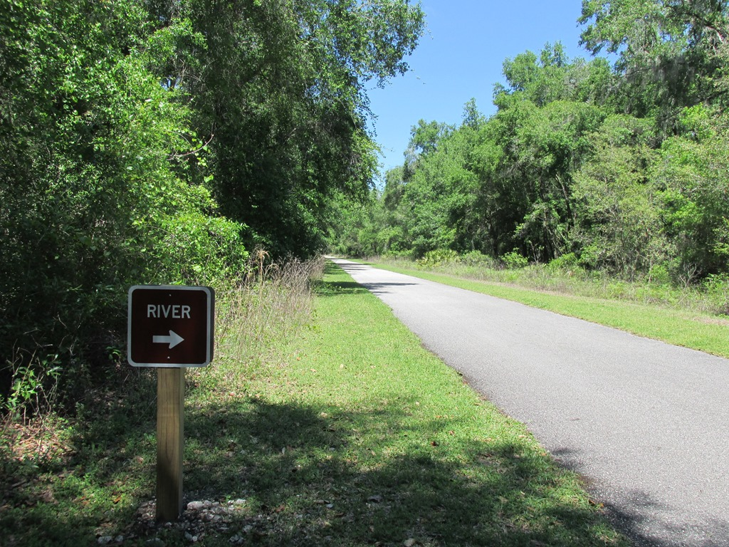 [12-Withlacoochee-Trail-River5]