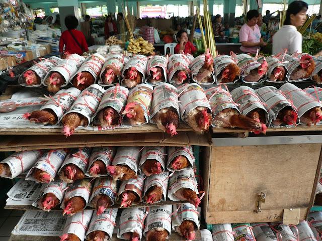 Cara Menjual atau membungkus ayam di Sibu Malaysia
