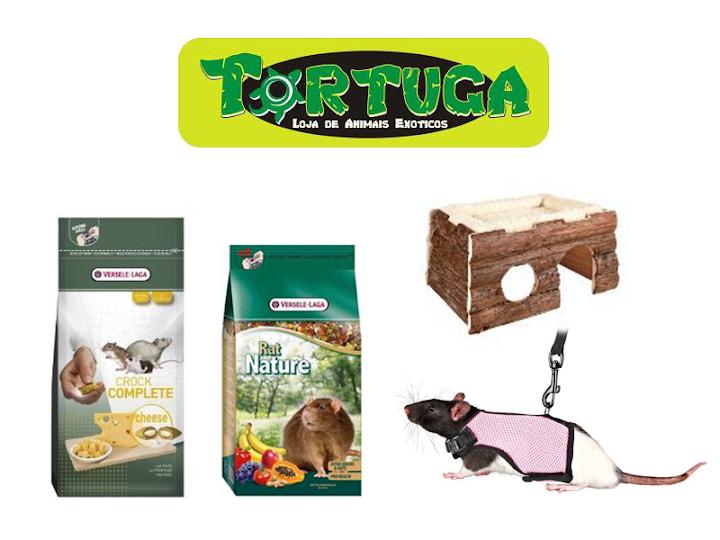 LEILÃO - TORTUGA PETSHOP Tortuga