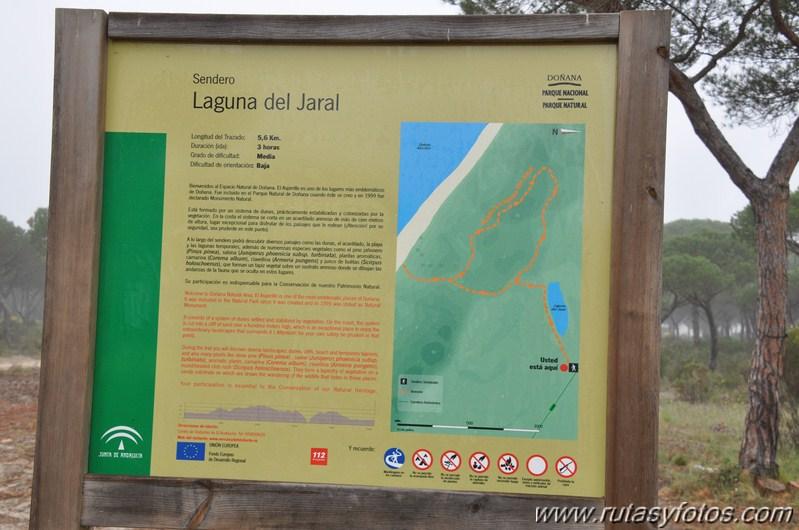 Laguna del Jaral - El Asperillo
