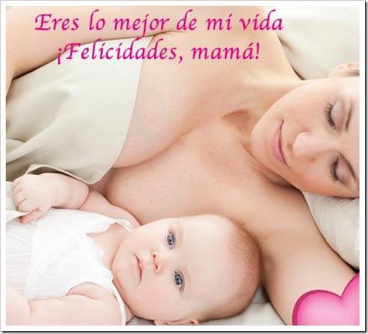 dia de la madre  tratootruco (4)
