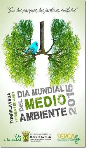 dia del medioambiente (24)