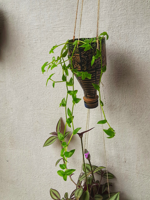 bottle gardening,planter designs