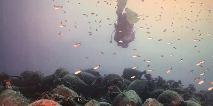 Αλόννησος: Γάλλοι δύτες βουτούν στο υποβρύχιο μουσείο και δεν πιστεύουν στα μάτια τους: Μοναδικό, βιώνεις την ιστορία! [βίντεο]