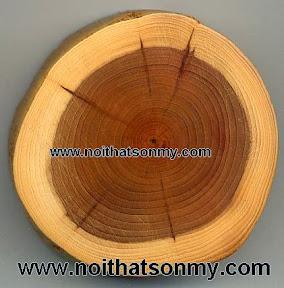 Sản xuất đồ gỗ nội thất