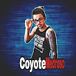Coyote M