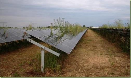 solar energy obama style